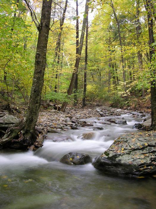 Delaware Water Gap Recreation Area, Waterfalls, Moving, 051023-n8700, Fall, Colors