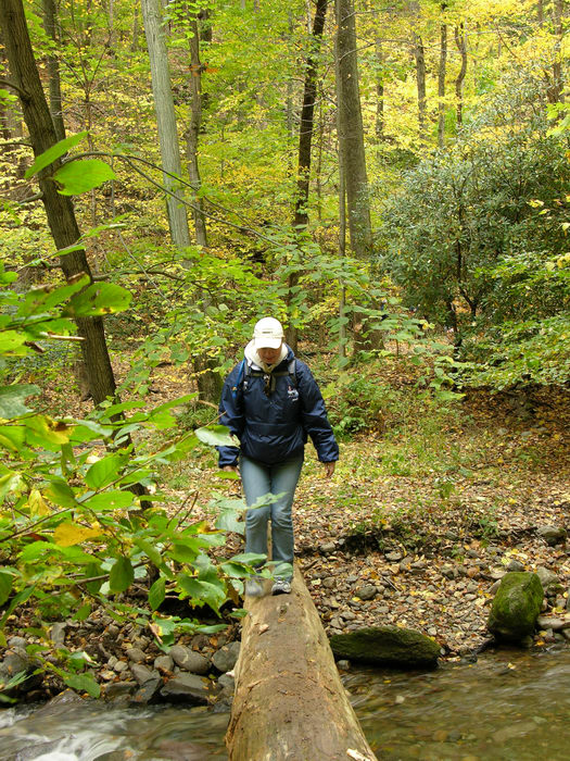 Delaware Water Gap Recreation Area, 051023-n8700, Trails, Paths, Boardwalks, General