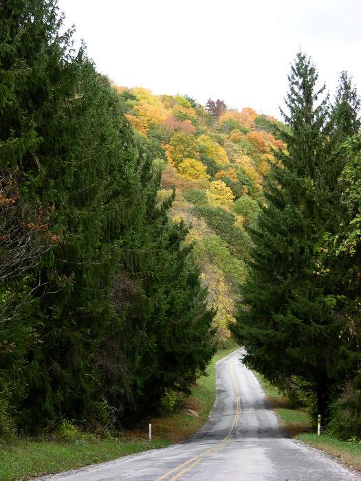 Delaware Water Gap Recreation Area, 051023-n8700, Favorites, Bridges, Roads, Fall, Colors