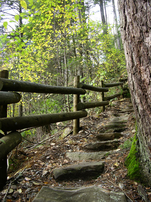 051023-n8700, Raymondskill, Falls, Trails, Paths, Boardwalks