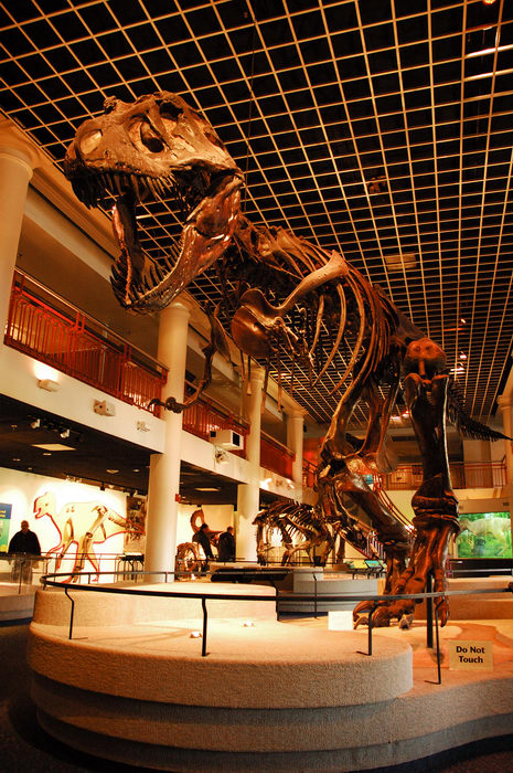 Favorites, All, Academy of Natural Sciences (PA), Exhibits, Museums
