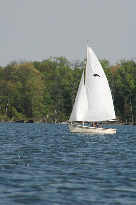 Manasquan, Reservoir, Sailing, Enjoying, some, MCParks, CAL00198