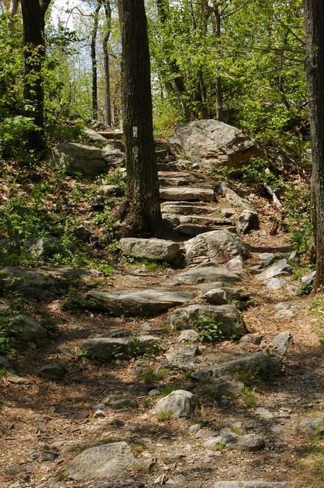 Trails, Paths, Boardwalks, Sunrise, Mountain, scenic, overlook, (, NJ), Camping, with, Christine,