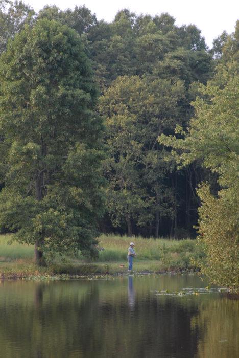 Fish, Tanks, Turkey, Swamp, Park, (LOC00097, NJ, CP), Water, Ponds, Lakes, General, A, walk, through,