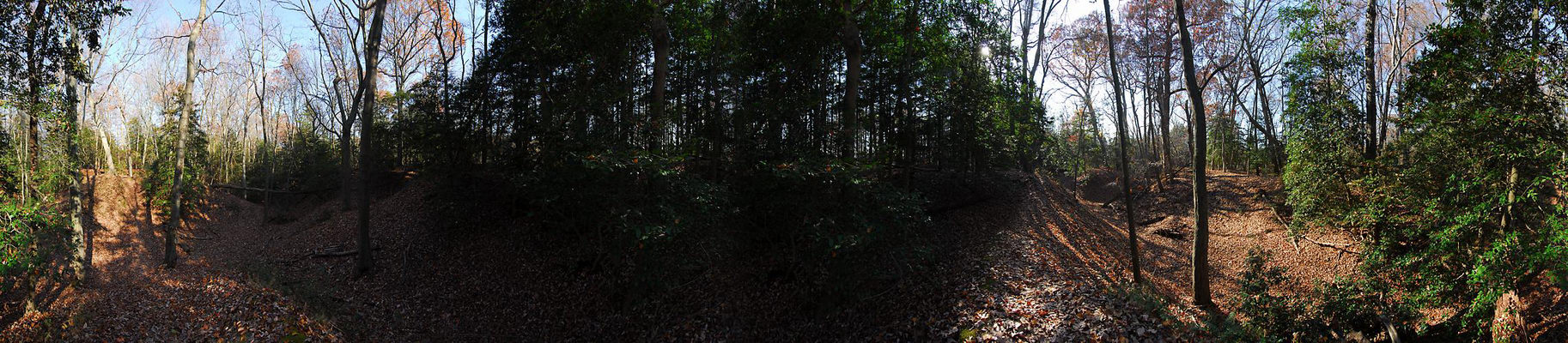 Allaire State Park (NJ), Panoramic, Hiking, pan1