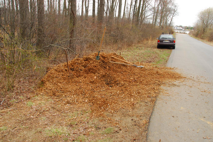 Mercer County Park (NJ), Cars, General, Trail, Day, With, S.M.A.R.T., Maintenance