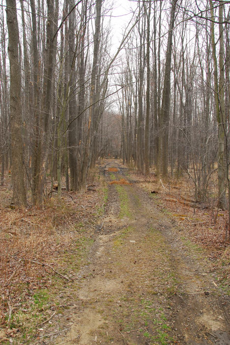 Mercer County Park (NJ), General, Trail, Day, With, S.M.A.R.T., Maintenance