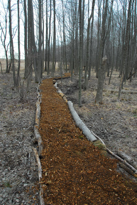 Mercer County Park (NJ), Trails, Paths, Boardwalks, General, Trail, Day, With, S.M.A.R.T., Maintenance