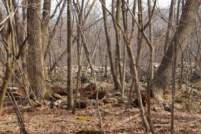 070421, Camping, in, Jim, Thorpe, PA, Ringing Rocks Park