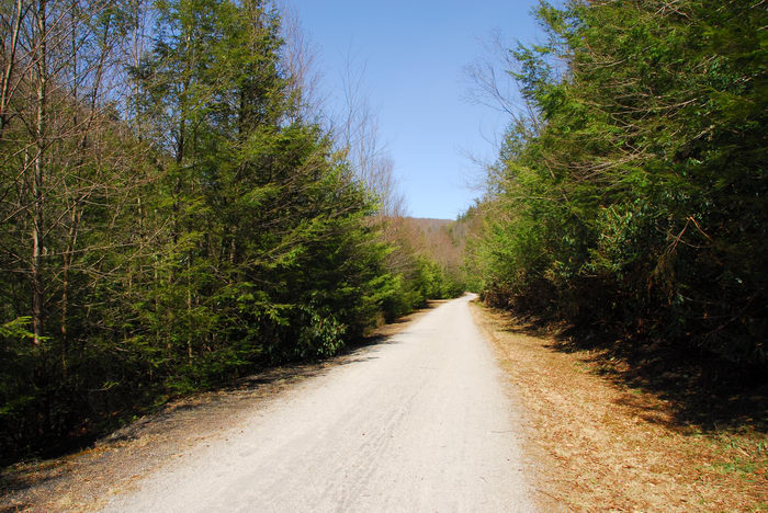 Trails, Paths, Boardwalks, Camping, in, Jim, Thorpe, PA, Rockport, Access, LOC00132