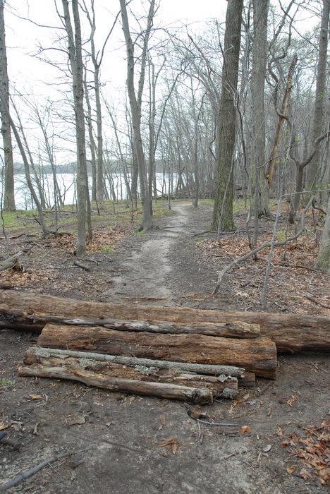Mercer County Park (NJ), Trails, Paths, Boardwalks, Trail, Maintenance, SMARTs, April, Day