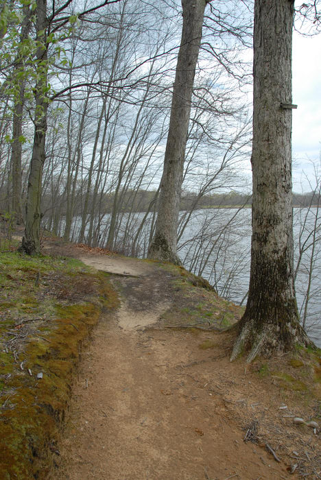 Mercer County Park (NJ), Trails, Paths, Boardwalks, SMARTs, April, Trail, Day