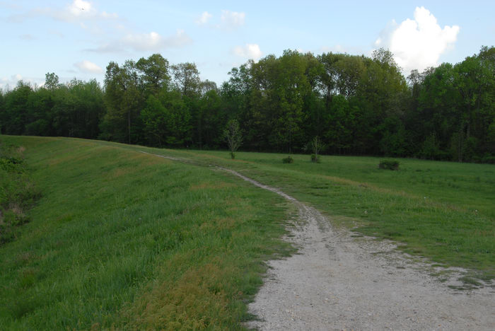 Mercer County Park (NJ), Trails, Paths, Boardwalks, Some, shots, from