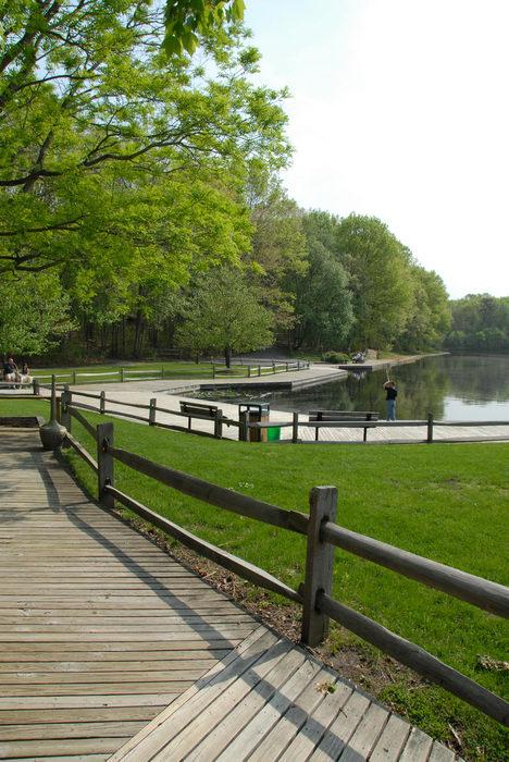 Turkey, Swamp, Park, (LOC00097, NJ, CP), A, walk, through