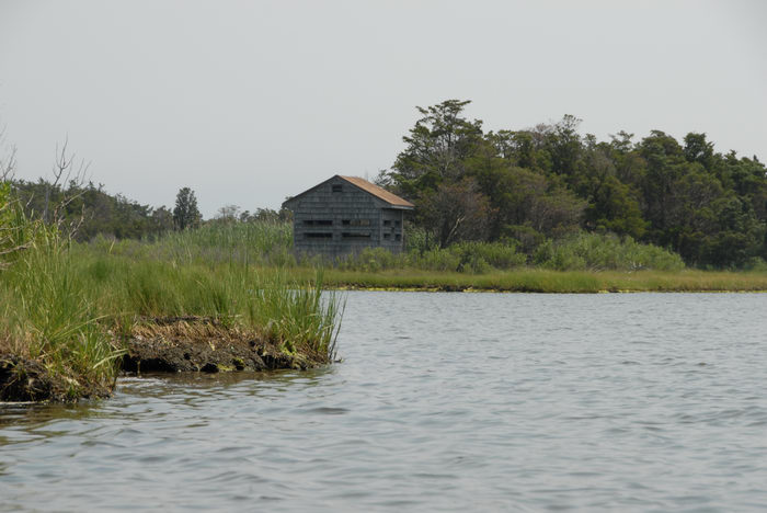 Sedge Islands (NJ), Paddling, with, Rob, in, the