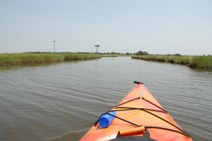 Kayaking, Paddling, Boating, Sedge Islands (NJ), with, Rob, in, the