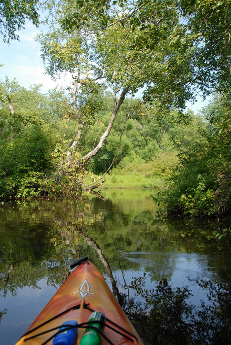 Water, Ponds, Lakes, General, Kayaking, Paddling, Boating, Rivers, Streams, Woods, Forest, h_q, with, Rob, in, Forge Pond (NJ), Metedeconk, River, LOC00070