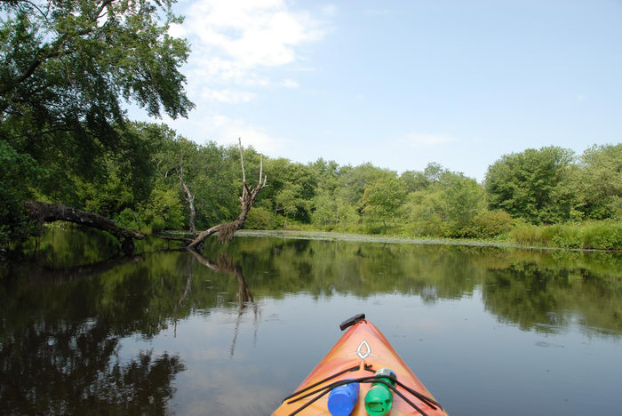 Water, Ponds, Lakes, General, Kayaking, Paddling, Boating, Rivers, Streams, with, Rob, in, Forge Pond (NJ), Metedeconk, River, LOC00070