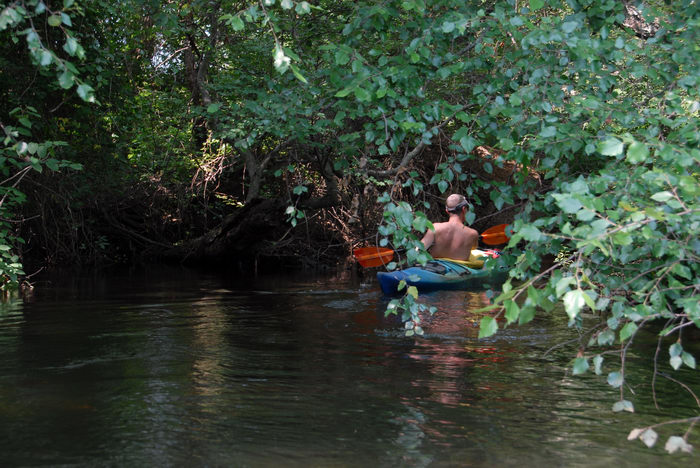 Water, Ponds, Lakes, General, Kayaking, Paddling, Boating, Rivers, Streams, Woods, Forest, h_q, Rob, Shedel, Friends, Outdoors, with, in, Forge Pond (NJ), Metedeconk, River, LOC00070
