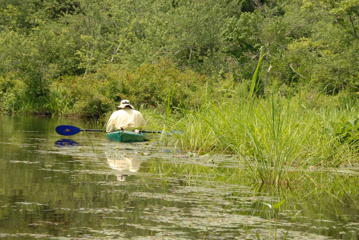 Water, Ponds, Lakes, General, Kayaking, Paddling, Boating, Rivers, Streams, Marsh, Swamp, Forge Pond (NJ), with, Rob, in
