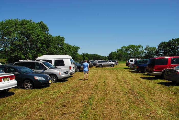 blue sky, cars, field, grass, parking, trees