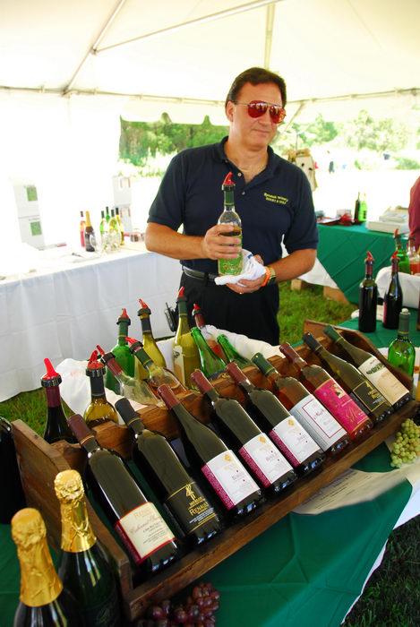canopy, festival, wine bottle, wine display