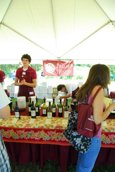canopy, festival, wine display