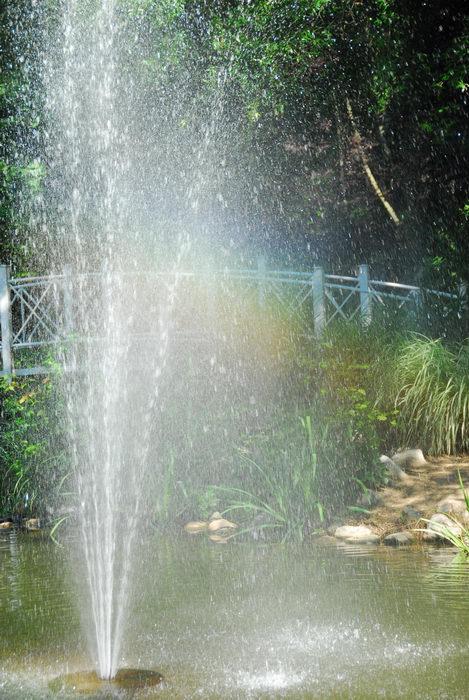 bridge, fountain, rainbow, water