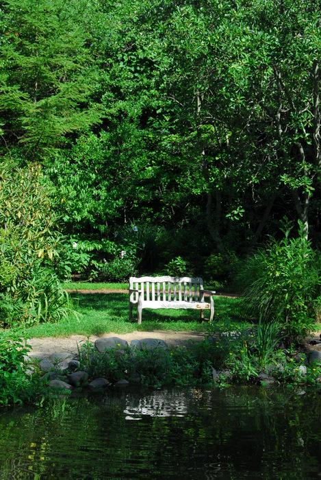 beautiful landscaping, bench, garden, tree, water, woods