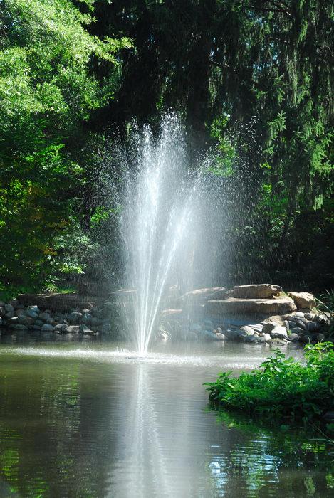 beautiful landscaping, fountain, water