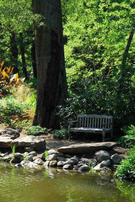 beautiful landscaping, bench, rocks, tree, water, woods
