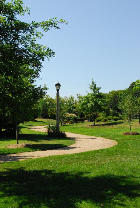beautiful landscaping, grass, path, tree