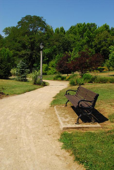 beautiful landscaping, bench, grass, path, tree