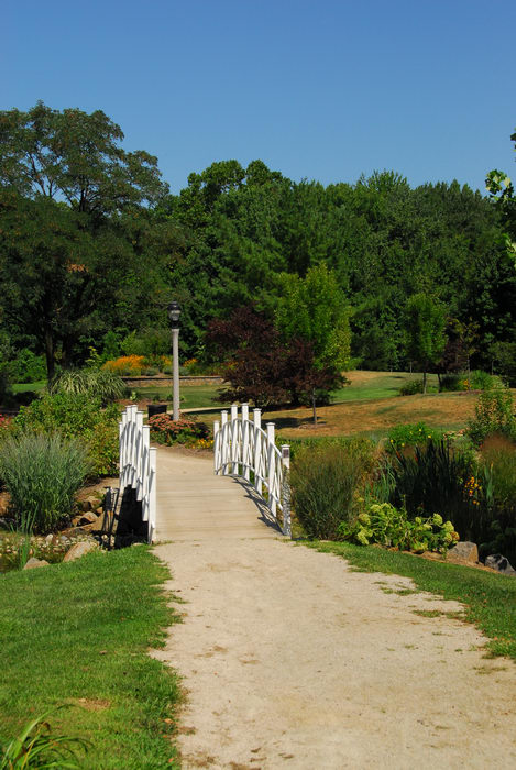 beautiful landscaping, bridge, grass, path, tree