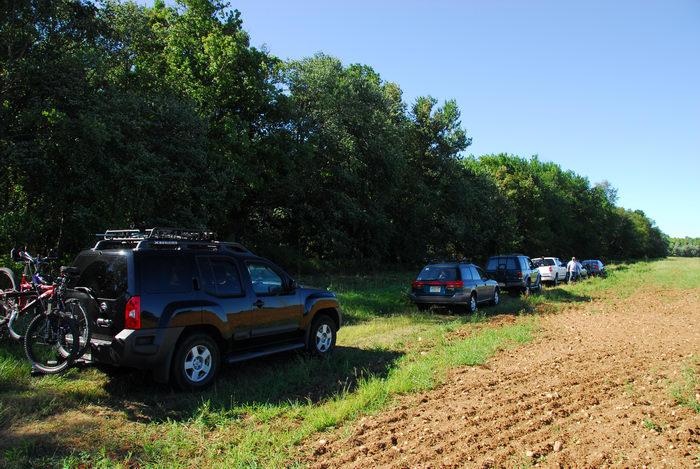 cars, field, grass, trucks, woods