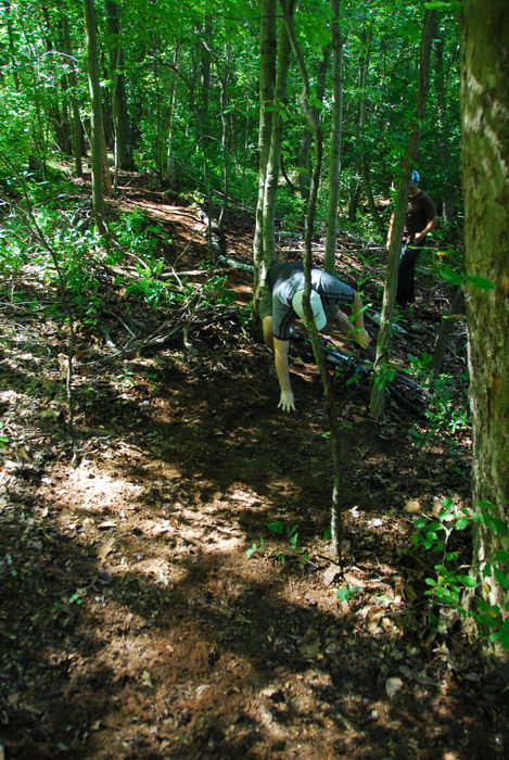 S.M.A.R.T., falling, mountain biking, path, trail, trail maintenance, trees, woods