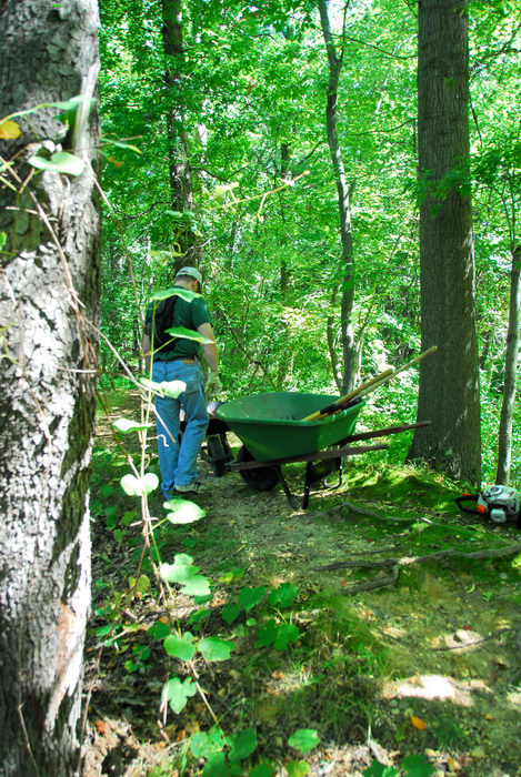 S.M.A.R.T., path, trail, trail maintenance, trees, woods