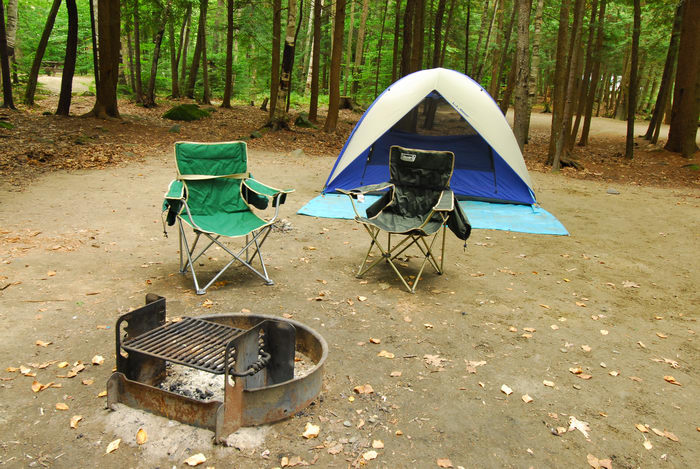 camping, campsite, firering, trees, woods