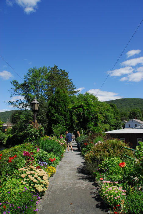 My Favorite Pictures, blue sky, flower, garden, path, trees