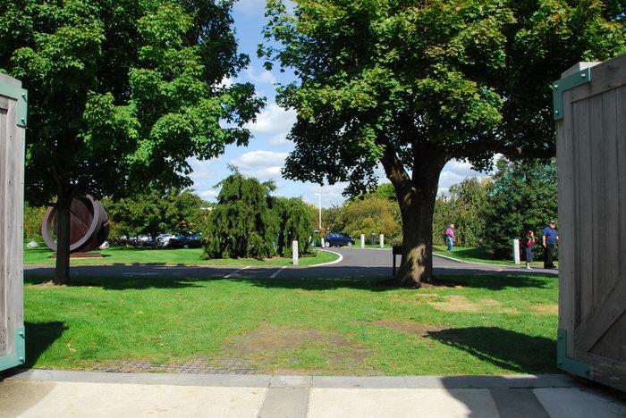 blue sky, grass, trees