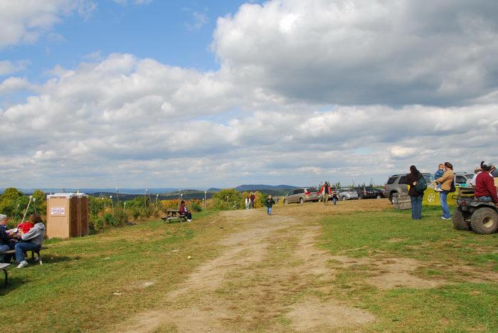 blue sky, dirt path, grass, people