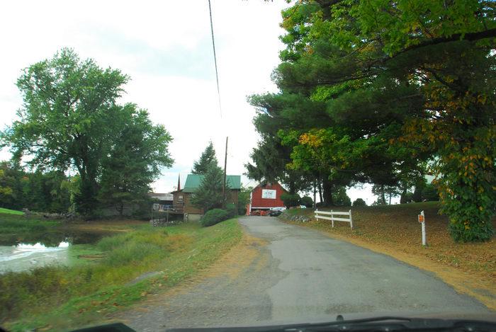 barn, pond, road, trees