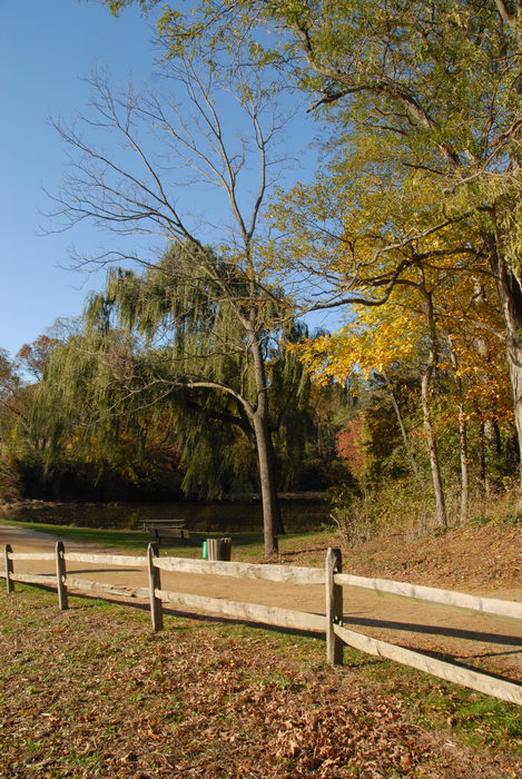 blue sky, fall colors, fence, grass, open areas, path, trees, walkway