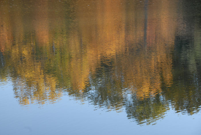 fall colors, open areas, pond, reflection, water