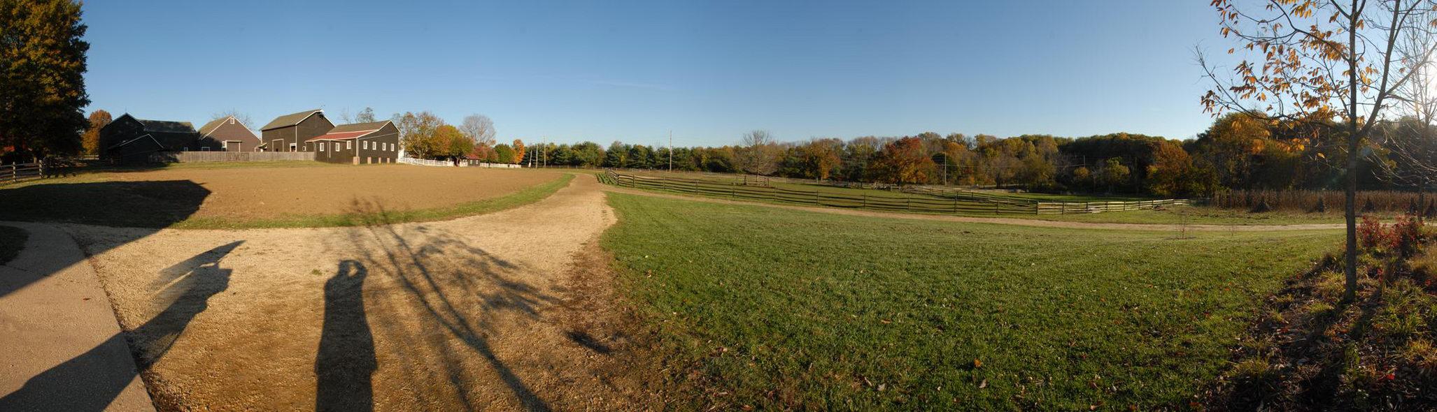 blue sky, field, grass, open areas, trees