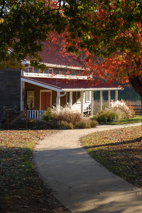building, fall colors, grass, path, shadow, trees, walkway