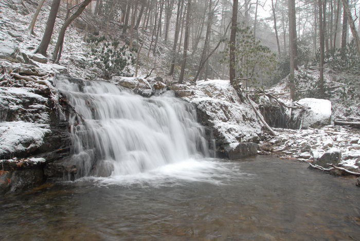 moving water, rocks, snow, stream, trees, water