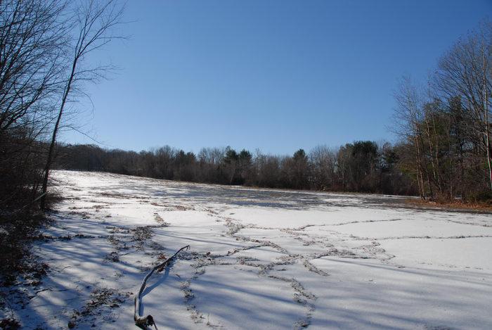 blue sky, parking lot, snow, trees