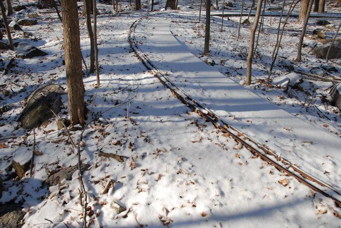 kids ride, snow, tracks