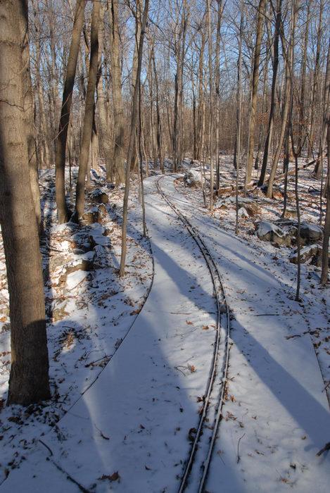 kids ride, snow, tracks, trees